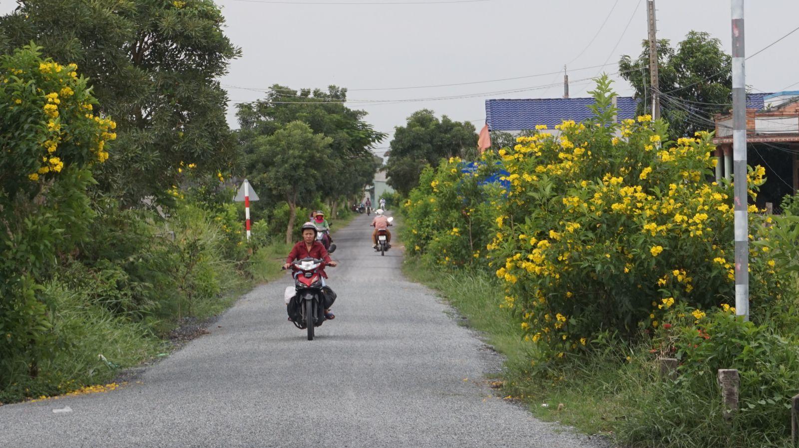 Tuyến đường hoa xã Thanh Vĩnh Đông