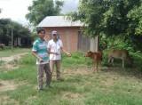 Đức Huệ: Nỗ lực thực hiện tốt chương trình giảm nghèo