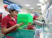 Long An: Doanh nghiệp trong nước thành lập mới tăng
