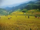 Du lịch theo ảnh với cái đẹp thiên nhiên miền Tây Bắc