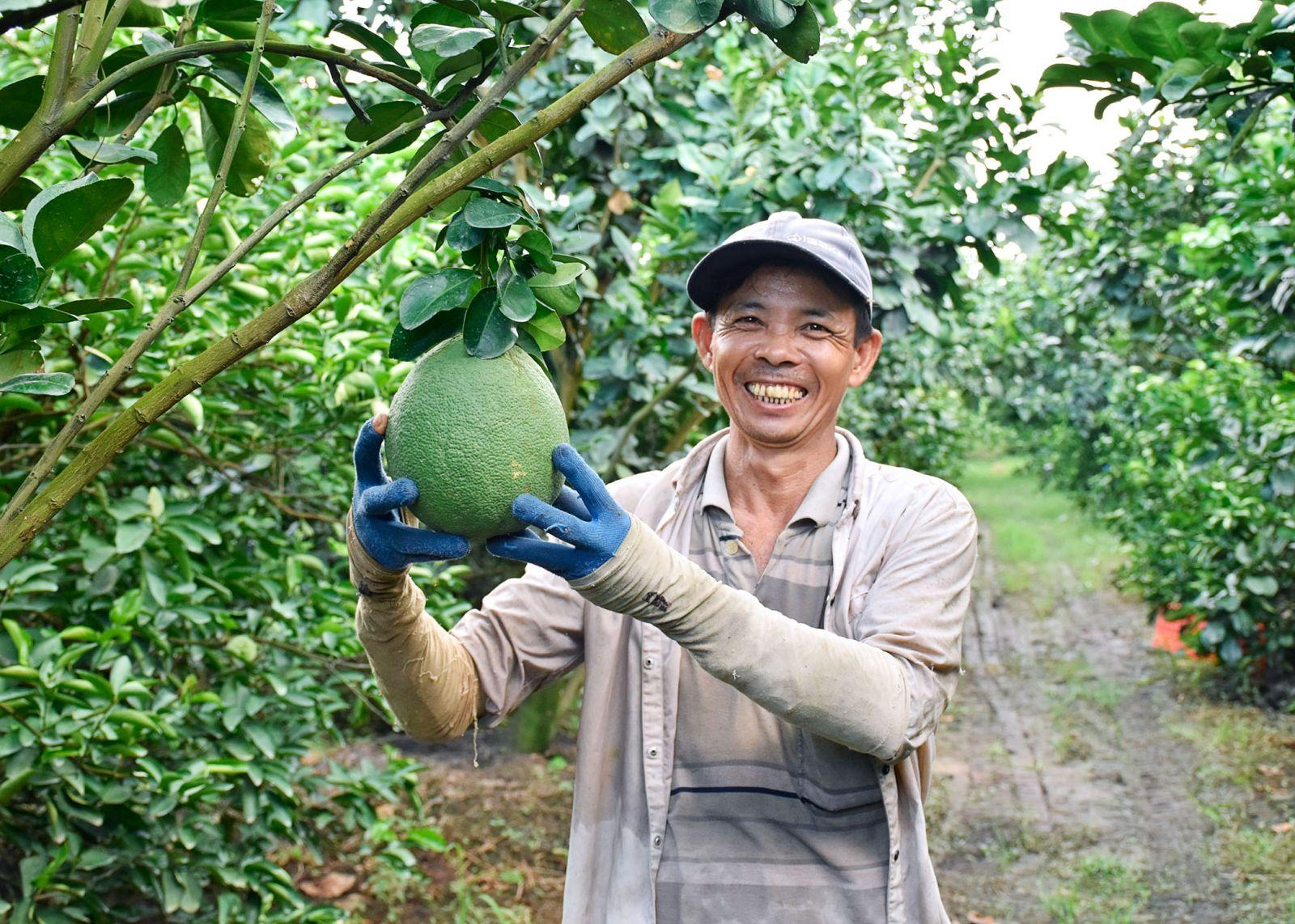 Nông dân phấn khởi vì chuyển đổi cây trồng mang lại hiệu quả kinh tế cao