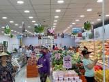 Long An: Kinh doanh lương thực, bán lẻ hàng hóa, dịch vụ tiêu dùng phục hồi