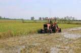 Vĩnh Hưng chủ động cho sản xuất vụ Đông Xuân 2020-2021