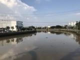 Nguyễn Cửu Vân và dòng kênh Bảo Định