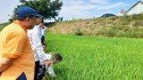 Cục Trồng trọt làm việc tại huyện Tân Thạnh