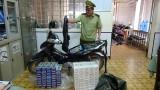 Đội Quản lý thị trường số 8 bắt giữ xe mô tô vận chuyển 1.000 gói thuốc lá điếu nhập lậu