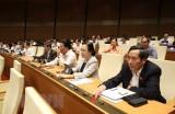 Quốc hội họp và cho ý kiến về dự án Luật Phòng chống ma túy sửa đổi