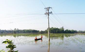 Khẩn trương khắc phục sự cố lưới điện ở Đức Hòa do giông lốc