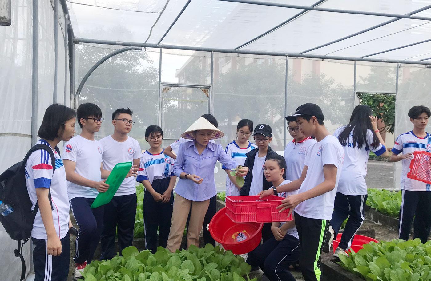 Giáo viên hướng dẫn các em về cách thu hoạch rau