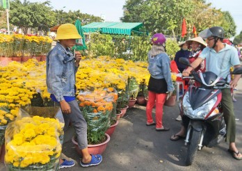 Chợ Hoa xuân Tân An dự kiến khai mạc vào 27/01/2021