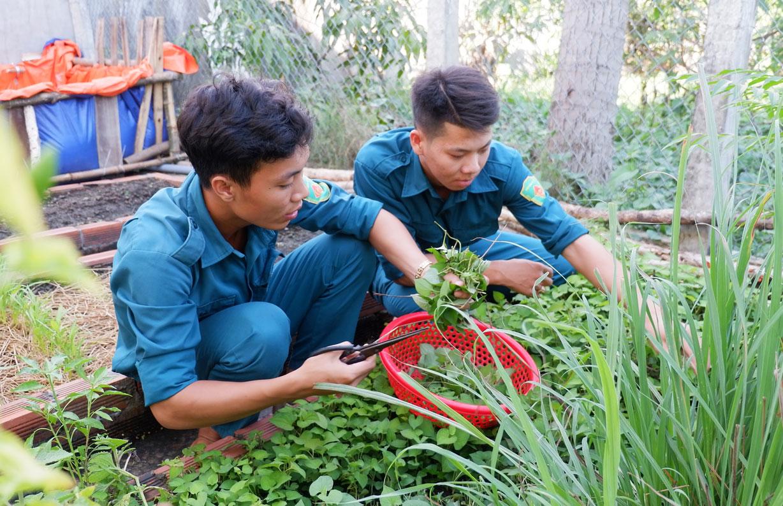 Nguyễn Hoài Phong cùng đồng đội tăng gia sản xuất