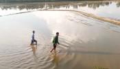 Dùng xung điện để khai thác thủy sản còn diễn ra