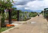 Nhựt Ninh: Về đích nông thôn mới