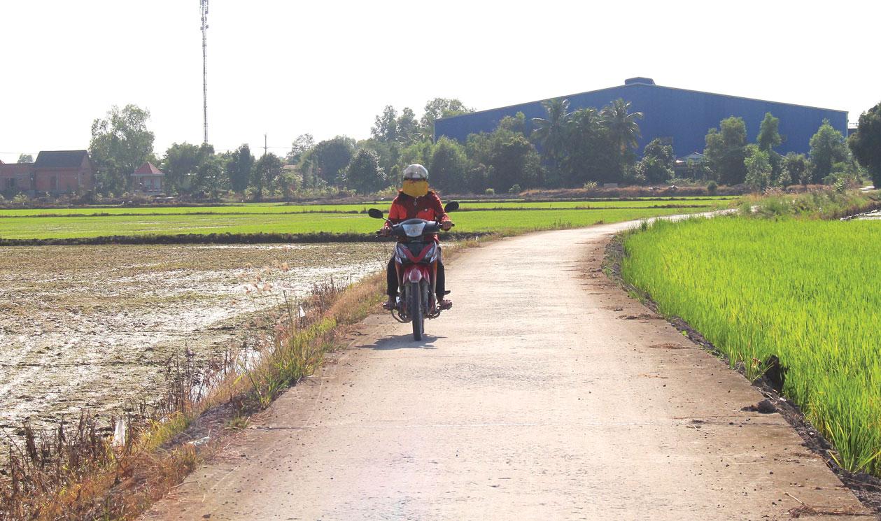 Ðường giao thông nông thôn  ở Tân Đông được đầu tư khang trang