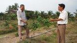 TP.Tân An: Đoàn thể chung tay xây dựng nông thôn mới