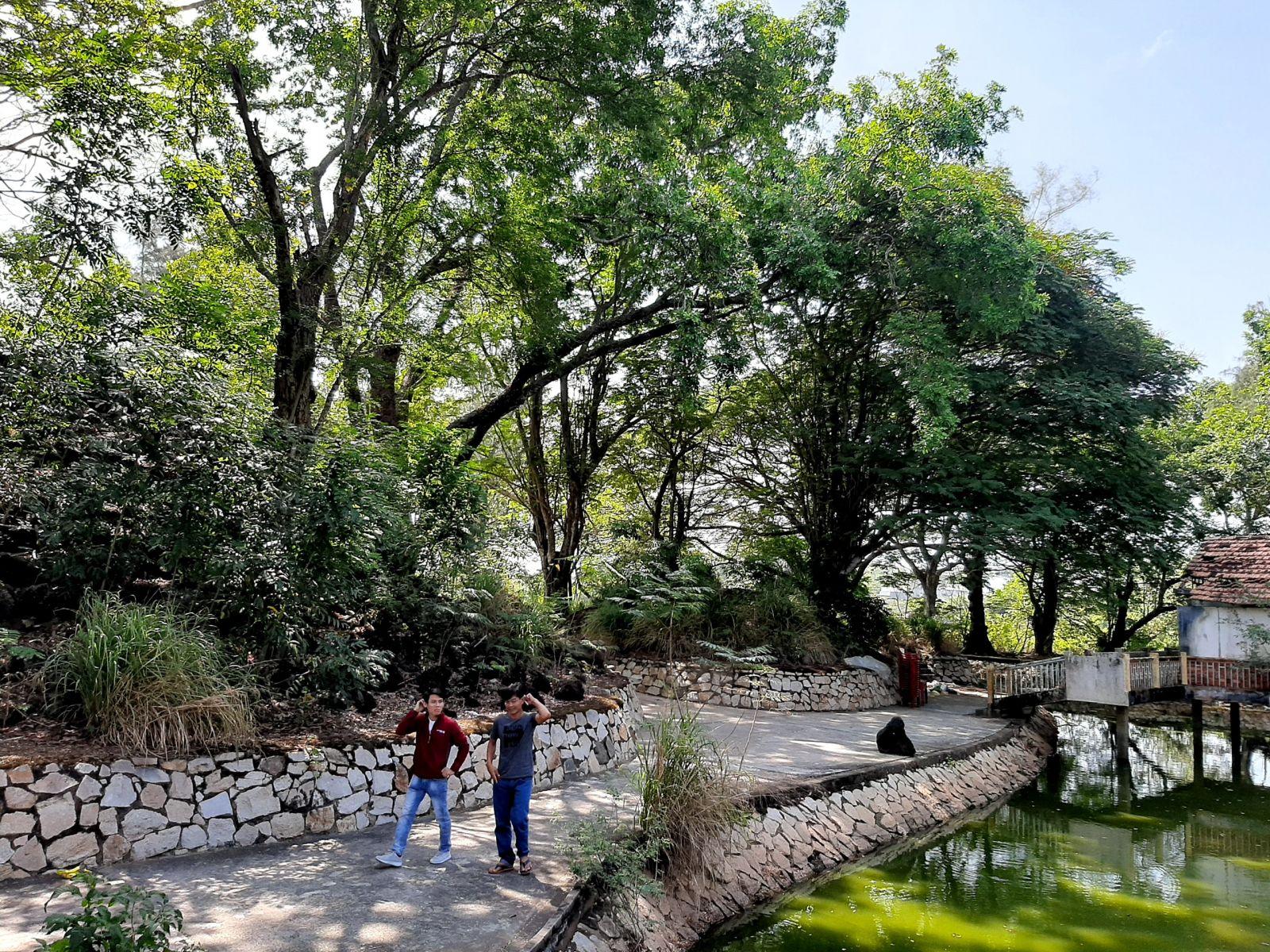 Đây là địa điểm các bạn trẻ thường xuyên lui tới đi dạo, trò chuyện bên bờ hồ