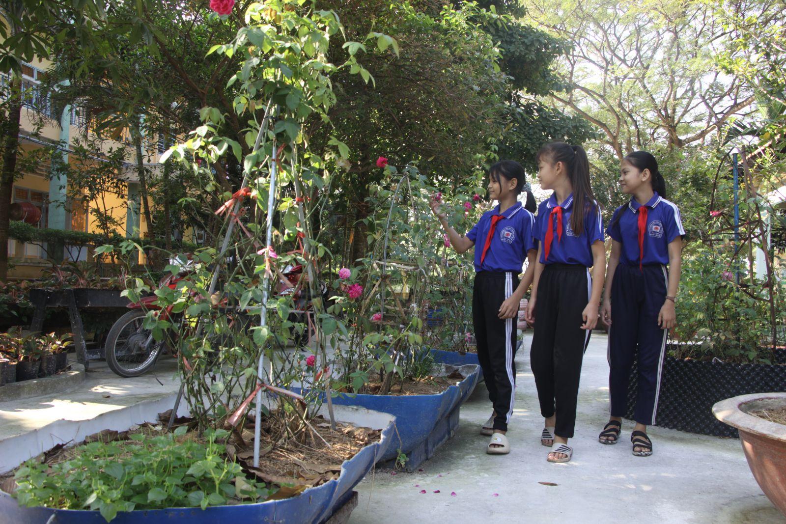 Những khóm hồng, sống đời, mẫu đơn đua nhau nở hoa rực rỡ trong vườn hoa từ vật liệu tái chế
