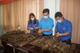 Huyện đoàn Cần Đước với hiều hoạt động chăm lo tết cho người nghèo