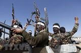 Mỹ, Saudi Arabia thúc đẩy nỗ lực ngoại giao chấm dứt xung đột ở Yemen