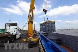 Báo Indonesia: Việt Nam tăng trưởng xuất khẩu ấn tượng trong năm 2020