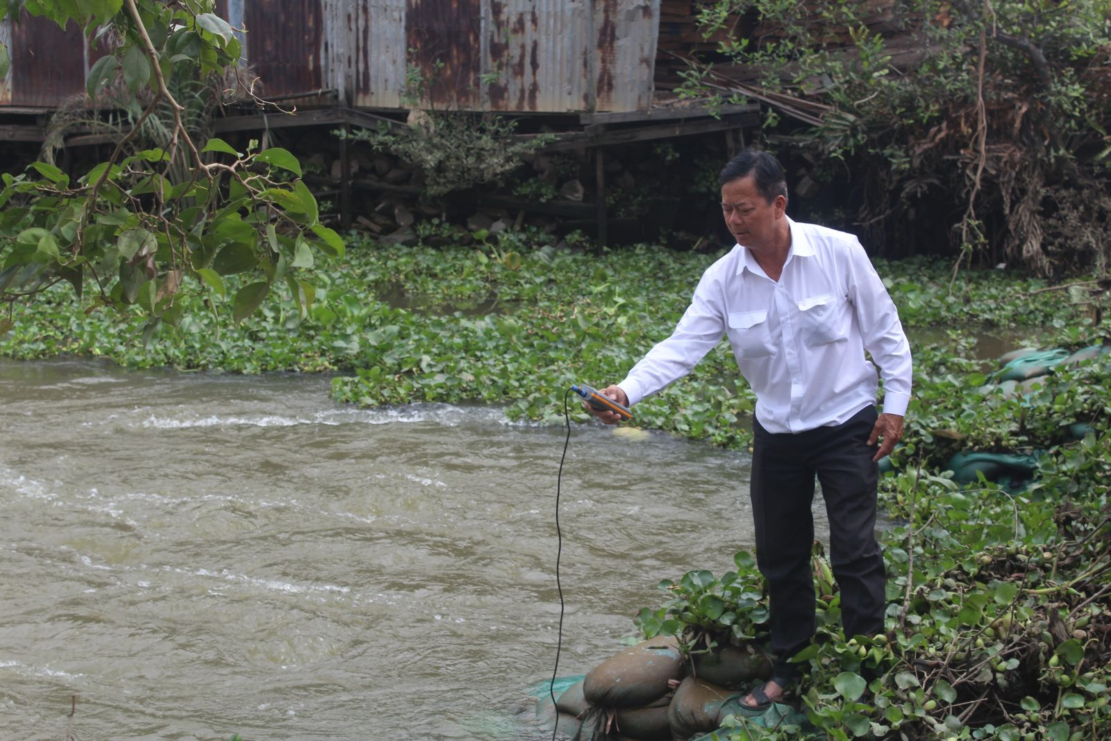 Deputy Director of the Provincial Department of Agriculture and Rural Development - Nguyen Chi Thien measures sewers' salinity
