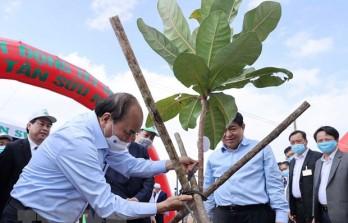 Thông điệp chương trình trồng 1 tỷ cây xanh: Vì một Việt Nam xanh