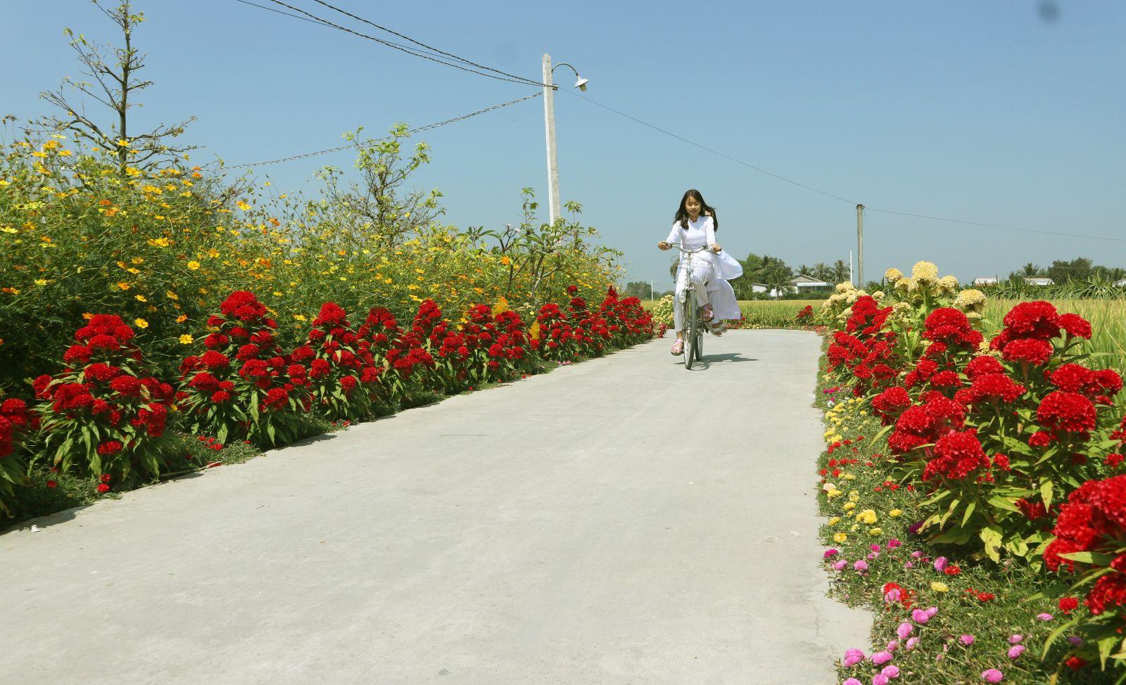 Nhờ làm tốt công tác dân vận, diện mạo nông thôn Tân Phước Tây có nhiều đổi mới