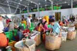 Phát huy vai trò của kinh tế tập thể trong xây dựng nông thôn mới