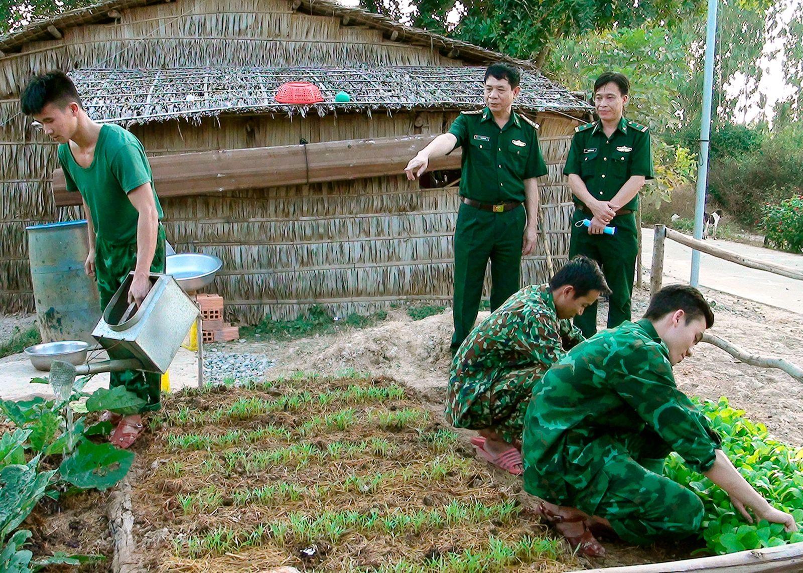 Các chiến sĩ nơi đây đã biến mảnh đất khô cằn thành một vườn rau tươi tốt