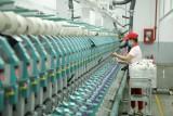 Doanh nghiệp xây dựng lộ trình cho EVFTA