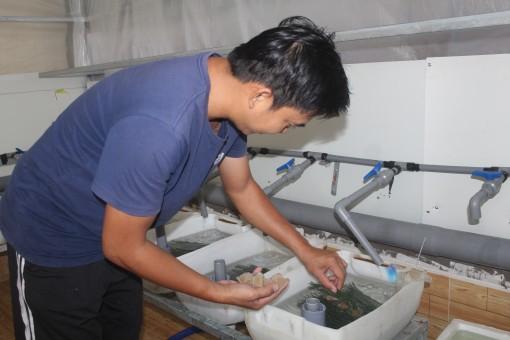Trại lươn giống công nghệ cao giữa lòng thành phố