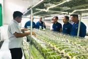 Trung ương Đoàn kiểm tra việc thực hiện đề án thanh niên khởi nghiệp và phát triển đảng tại huyện Cần Giuộc