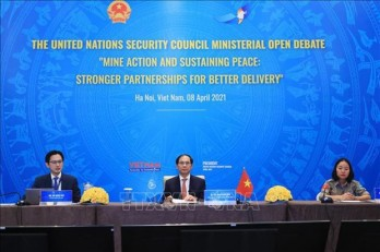 UNSC debate urges int'l cooperation in mine action