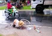 Cụ ông đi xe đạp tử vong sau tai nạn giao thông