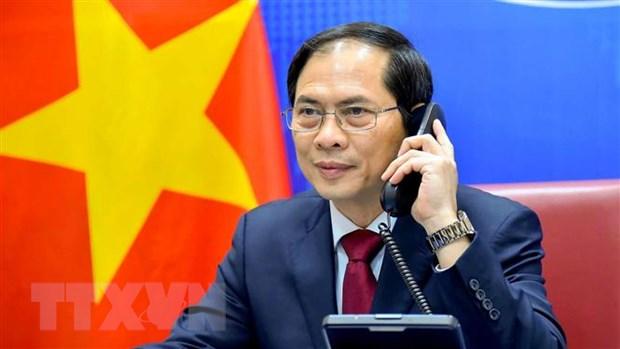 Bộ trưởng Ngoại giao Bùi Thanh Sơn. (Ảnh: TTXVN phát)