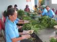 Từng bước thay đổi mô hình sản xuất và tiêu dùng theo hướng thân thiện với môi trường