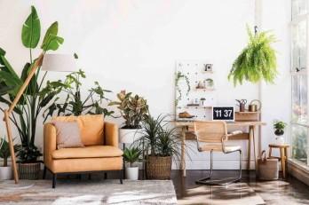7 lỗi trang trí thường mắc khi trang trí phòng khách
