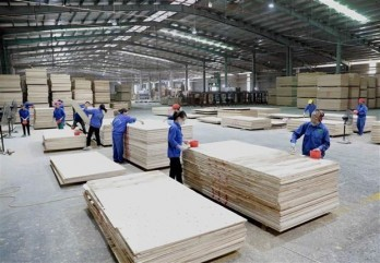 COVID-19 makes nearly 10 pct of domestic firms lack capital: official